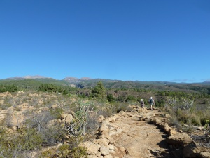 A view to Mt Guajara and the other mountains around Las Cañadas del Teide.